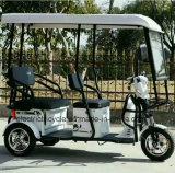 مسافر كهربائيّة درّاجة ثلاثية درّاجة ناريّة لأنّ عمليّة بيع