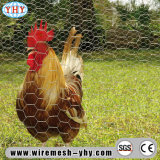토끼 닭 그물세공 PVC 입히는 6각형 철망사