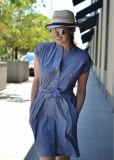 Blauer Chambray-Mutterschaftshemd-Kleid