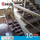 De Balustrades van het roestvrij staal en de Componenten van Leuningen voor het BinnenTraliewerk van de Trap van /Outdoor