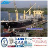 30t30m Draht-Luffing-Marineplattform-Kran-Verschiffen-Kran