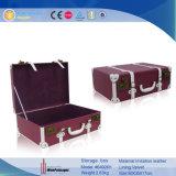 Herstel de Koffer van het Leer van de Stijl Pu met Klink (6492)