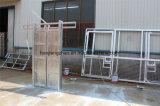 Broche de retenue principale de bétail de matériel de bétail à vendre (XMS144)