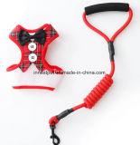 Het Lopen van de Hond van de Polyester Bowtie van de Toebehoren van het huisdier Knappe Uitrusting