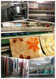 Industrielle Teppich-Waschmaschine für Chelaning System