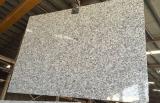 Mattonelle bianche delle lastre del granito dello spruzzo della Cina