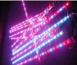 la barra rigida impermeabile di 28W LED coltiva l'indicatore luminoso