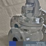 Form-Stahl-Gebrüll-Dichtungs-Kugel-Ventil