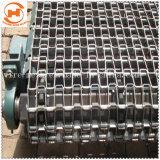 La cinta transportadora de acero inoxidable con cadena de eslabones