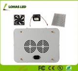 고성능 500W 1000W 2000W 가득 차있는 스펙트럼 옥수수 속 LED는 빛을 증가한다