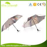 완전히 3 Srction 디자인 가득 차있는 바디 고풍 우산
