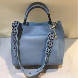 중국 공급자 새로운 디자인 여자 핸드백 긴 꽃 결박 Sh169를 가진 최고 판매 숙녀 형식 끈달린 가방