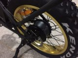 脂肪質カラーTFT IPS表示が付いている浜4.0の電気バイク