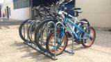 6개의 자전거 지면 자전거 선반