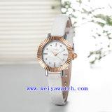 Reloj modificado para requisitos particulares reloj de la mujer de la promoción (WY-030C)