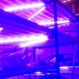 Il &RoHS Greenhous dell'interno impermeabile LED del Ce idroponico coltiva l'illuminazione