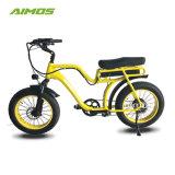 AMS-Tde-07 de 20 pulgadas neumático Fat Mountain bicicleta eléctrica de 250W