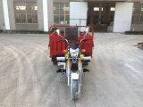 Cee 3 ruedas Moto triciclo con mercancías