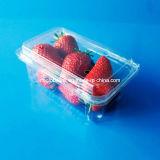 Boa qualidade Bandeja de animal de estimação de plástico descartável / Morango / Blueberry Clamshell Tray