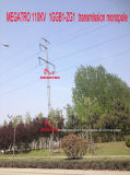 Megatro 110kv 1ggb1-Zg1 Übertragung Monopole