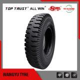 Pattern Sh 138/148/158/168 /188를 가진 가벼운 Truck Bias Tyre 750-16