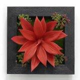 Высокое качество Искусственные растения и цветы Зеленая Стена Gu-Wall00989090012
