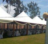 tente de pagoda de 8X8/10X10 M, tente d'écran, tentes de bâti d'événement