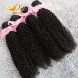 Tessuto brasiliano dei capelli umani del Virgin crespo non trattato dell'arricciatura 8A
