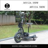 Motorino elettrico del motociclo della rotella di potenza della batteria 3 in Filippine