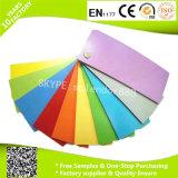 Impermeable de PVC estándar de plástico Suelo Rolls por Tienda