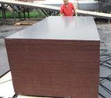 Madera Shuttering hecha frente película de la madera contrachapada de Brown del álamo para la construcción (6X1250X2500m m)
