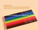 lápices plásticos del color 12PCS en dimensión de una variable hexagonal con el extremo afilado