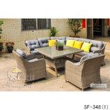 Insiemi esterni del sofà, mobilia del rattan del patio, insiemi del sofà del giardino (SF-348)