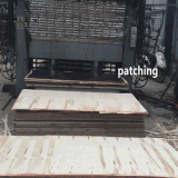 فيلم سوداء يكسى بناء [شوتّرينغ] خشب رقائقيّ لأنّ تايلاند سوق