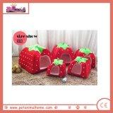빨강에 있는 짧은 견면 벨벳 딸기 모양 두 배 사용 애완 동물 집