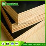 Melamina presionada caliente de dos veces/madera contrachapada estándar fenólica