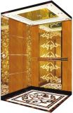 Vvvf駆動機構のGearlessキャンピングカーの別荘のエレベーター(RLS-203)