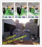 Prix de générateur de gaz de haute performance de générateur de gaz de la CE d'OIN bio