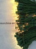 Luz de seqüência do LED na cor branca quente de ouro com alta qualidade Promformance (LW100)