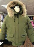 Curto engrossar o casaco de inverno para baixo de pato à prova de vento cubra