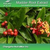 100% натуральные Марены Root Extract (10: 1)