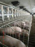 الخنازير آليّة يتوالد تجهيز