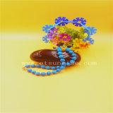 De eenvoudige Halsband van de Parels van de Manier Blauwe Natuurlijke Turkooise