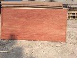Una madera contrachapada caliente de Bintangor de la prensa