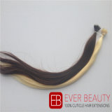 ブラジルの人間の毛髪を搭載するNanoリングの毛の拡張