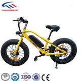 LED Display Ebike with It