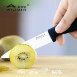 Ecoの注入のハンドルが付いている友好的な陶磁器のフルーツのナイフ