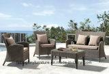 Sofà esterno del giardino della mobilia del patio della mobilia del rattan (TG-030)