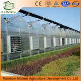 冷却装置が付いているチャネルの農業の温室