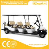 Buggy facente un giro turistico elettrico delle sedi poco costose di bianco 8